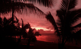 Red Delight. Dull Red Sunset Royalty Free Stock Image