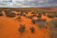 Red desert. Royalty Free Stock Photo