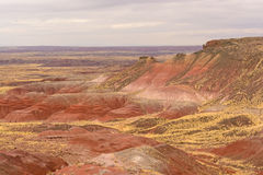 Red Desert on a Cloudy Day Royalty Free Stock Images