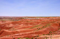 Red desert landscape Royalty Free Stock Photography