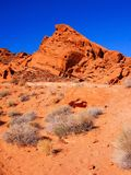 Red desert of Nevada Royalty Free Stock Image
