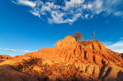 Red Desert and Scattered Rocks Royalty Free Stock Photography