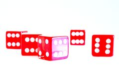 Red dice. Five red dice on a white isolated background Royalty Free Stock Photos