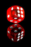 Red dice. With reflection over black background stock photos