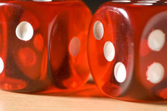 Red Dice. Two red dice isolated and close up Royalty Free Stock Photos