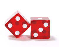 Red Dice royalty free stock images