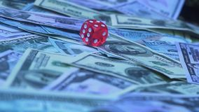 Red dice falling on money. Gambler playing game at casino stock video