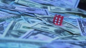 Red dice falling on money. Gambler playing game at casino stock footage