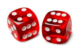 Red dices in midair on white background close up. Red dice game leisure activity play fun Royalty Free Stock Images