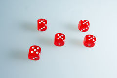 Red dice on the glass. Five dice with the value of `five`. Successful throw. Five red dice are on the table Stock Photos
