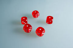 Red dice on the glass. Five dice with the value of `one`. Successful throw. Five red dice are on the table Stock Images