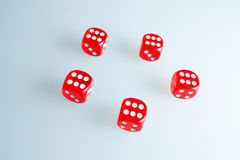 Red dice on the glass. Five dice with the value of `six`. Successful throw. Five red dice are on the table Stock Photography