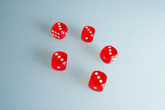 Red dice on the glass. Five dice with the value of `three`. Successful throw. Five red dice are on the table Stock Images