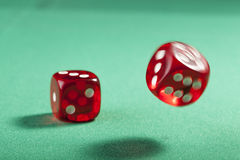 Red Dice on Green Stock Photography