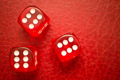 Red dice showing number 6 Royalty Free Stock Photos