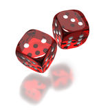 Red dice toss still in air. Two red dice flying in the air on white background Stock Image