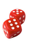 Red Dice on White Royalty Free Stock Images