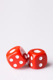Red dice on white background Royalty Free Stock Image