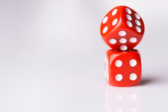Red dice on white background Royalty Free Stock Photos