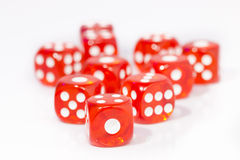 Red Dice on White background Stock Photography
