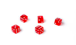 Red dice on a white background Stock Photos