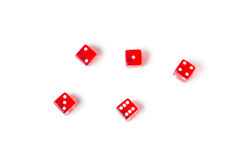 Red dice on a white background Stock Image