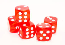 Red dices. Isolated on white background Royalty Free Stock Images