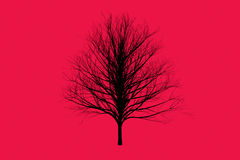 Red die tree color Silhouettes art design Stock Photo