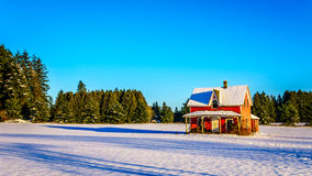 Red dilapidated and abandoned house in a wide snow covered field in Glen Valley in the Fraser Valley of British Columbia. Canada under clear blue sky Royalty Free Stock Photo
