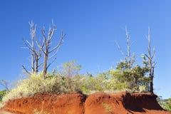 Red Dirt, Kauai Stock Image
