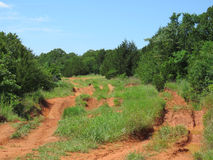 Red dirt off road track in Oklahoma Royalty Free Stock Photo
