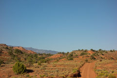 A red dirt road in the desert Stock Photography