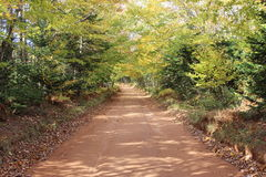 Red Dirt Road Stock Photo