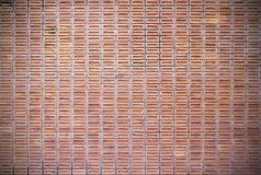 Red dirty brick wall background Royalty Free Stock Images