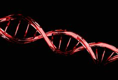 Red DNA molecule structure on black. Genetic code concept royalty free stock photo