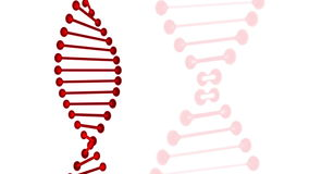 Red DNA rotating
