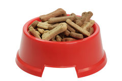 Red dog bowl Royalty Free Stock Photo