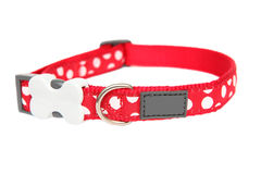 Red dog collar Stock Photos