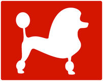Red dog poodle icon Stock Images