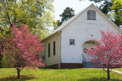 Red Dogwood trees bloom along a little white church. Stock Photos
