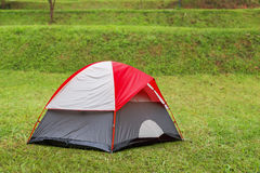 Red dome tent on green grass in camping site Stock Images