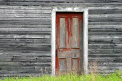 Red door on old wood wall. Old red scratched door on a old gray wood wall with green grass at the bottom Stock Photo