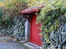 The Red Door. Plants and colors are important for village life Stock Images