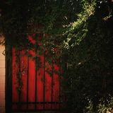 Red door. Are you in or out of the door of heart Stock Image