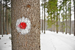 Red dot hiking sign on a tree Royalty Free Stock Images
