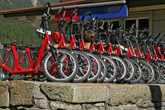 Red downhill bicycles for rent Stock Image