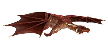 Red Dragon. 3D digital render of a red fairytale dragon isolated on white background Stock Photography