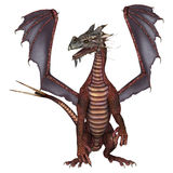 Red Dragon Stock Images