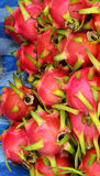 Red Dragon fruit Royalty Free Stock Images