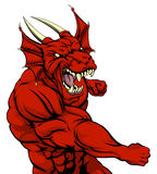 Red dragon mascot fighting Royalty Free Stock Photo